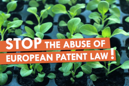 Stop the abuse of european patent law!